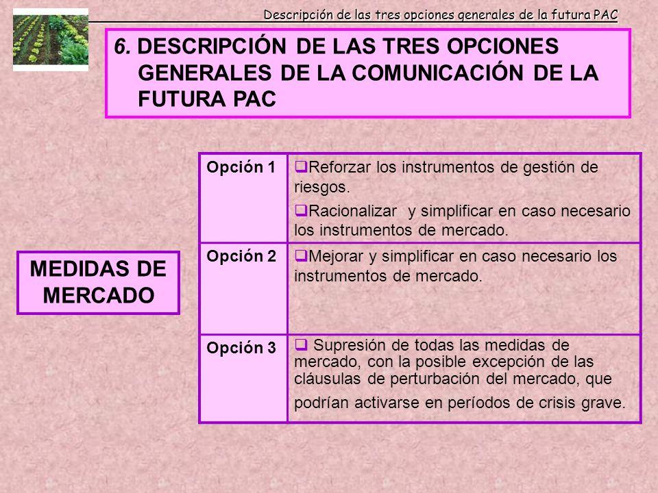 Descripción de las tres opciones generales de la futura PAC