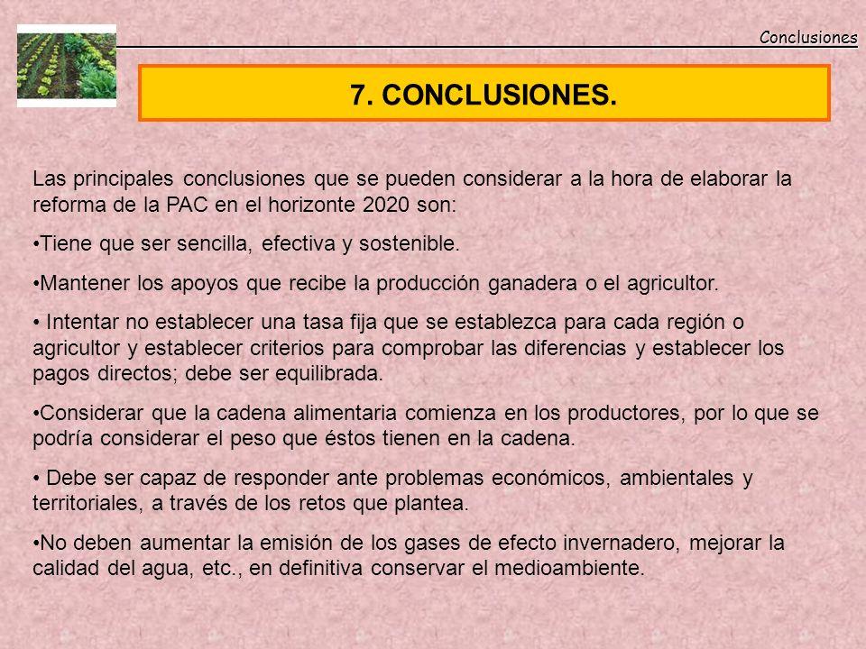 7. CONCLUSIONES. Conclusiones