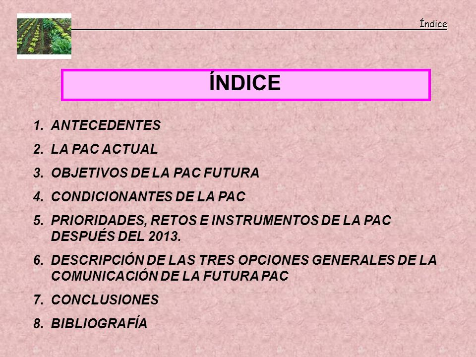 ÍNDICE ANTECEDENTES LA PAC ACTUAL OBJETIVOS DE LA PAC FUTURA