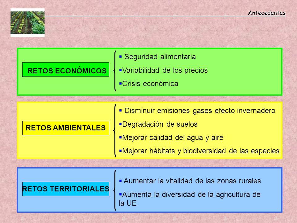 Antecedentes Seguridad alimentaria. Variabilidad de los precios. Crisis económica. RETOS ECONÓMICOS.