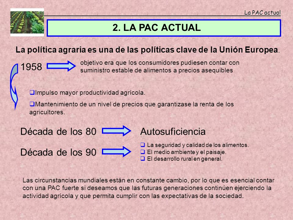 2. LA PAC ACTUAL 1958 Década de los 80 Autosuficiencia