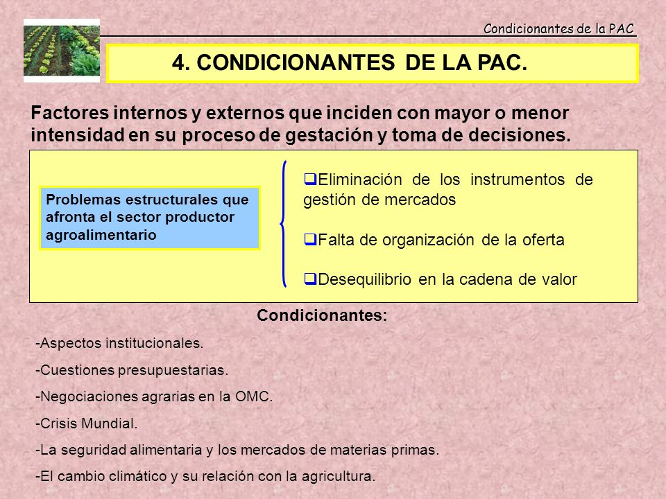 4. CONDICIONANTES DE LA PAC.