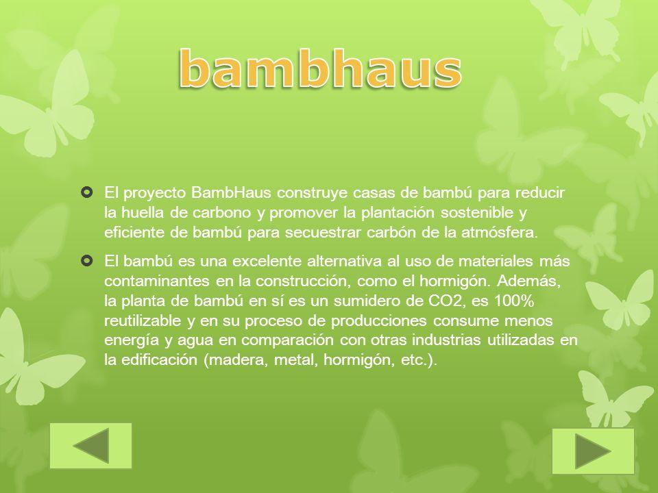 bambhaus
