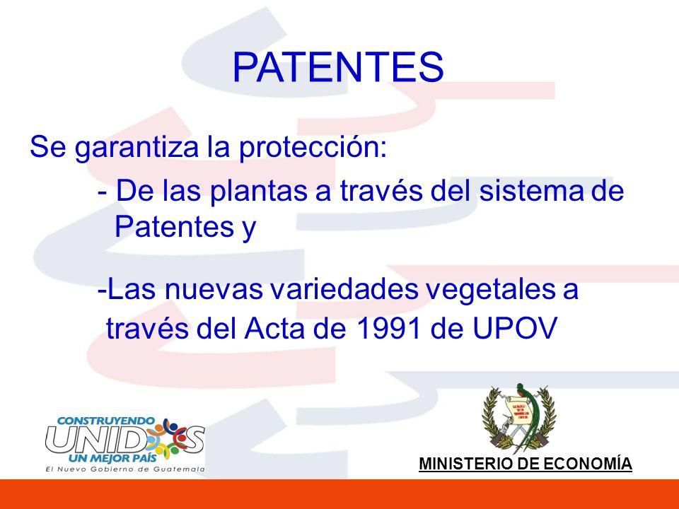 PATENTES Se garantiza la protección: