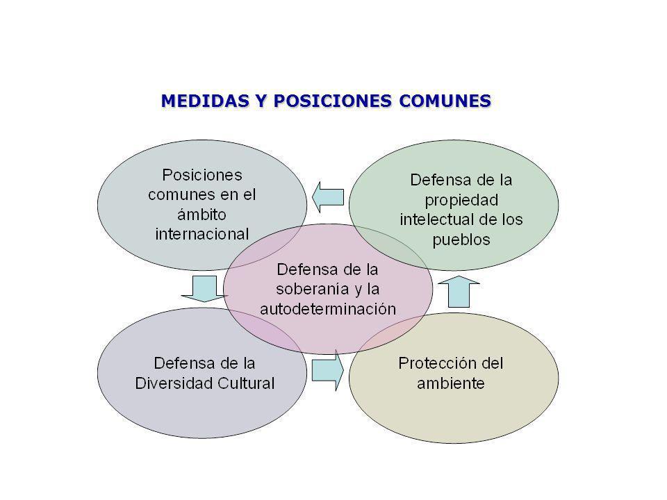 MEDIDAS Y POSICIONES COMUNES