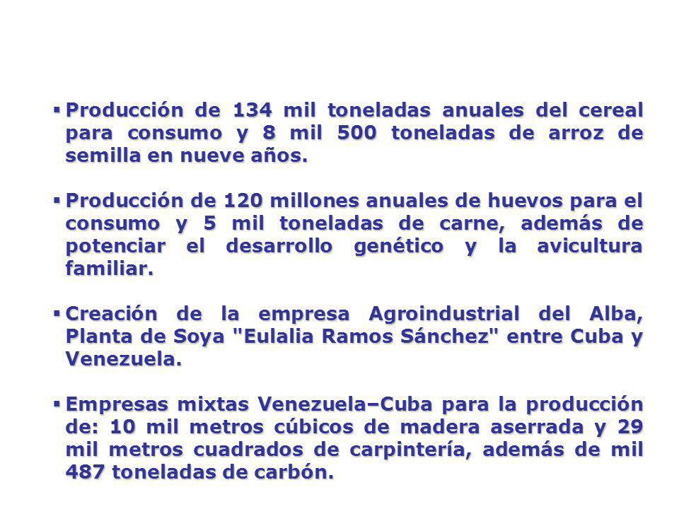 Producción de 134 mil toneladas anuales del cereal para consumo y 8 mil 500 toneladas de arroz de semilla en nueve años.