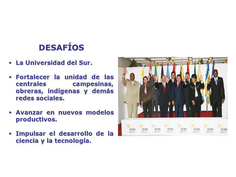 DESAFÍOS La Universidad del Sur.