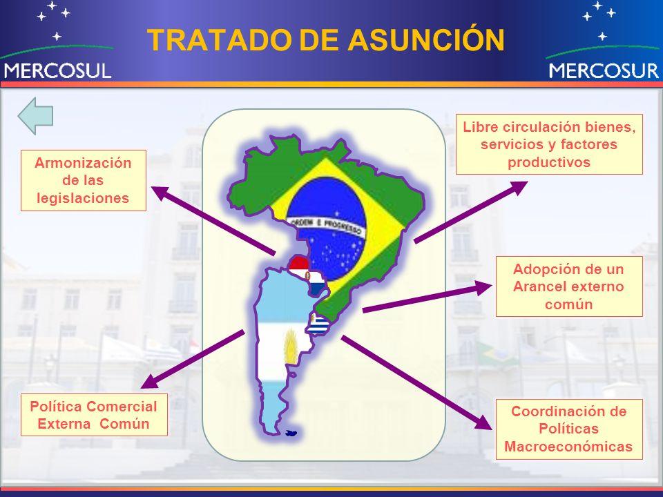 TRATADO DE ASUNCIÓN Libre circulación bienes, servicios y factores productivos. Armonización de las legislaciones.