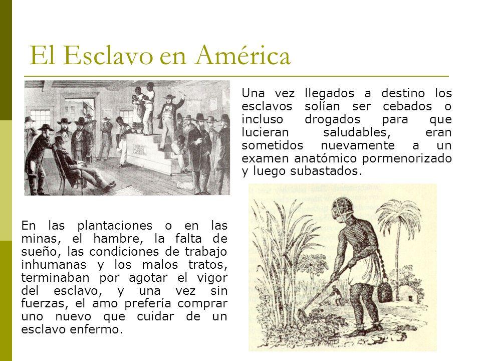El Esclavo en América