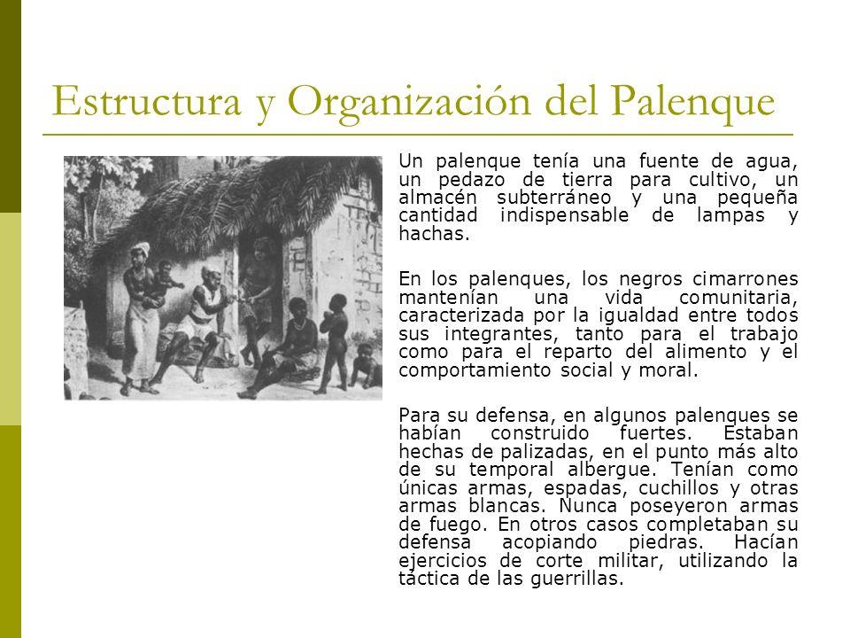 Estructura y Organización del Palenque