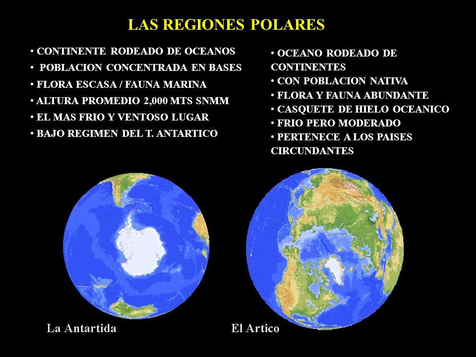 LAS REGIONES POLARES OCEANO RODEADO DE CONTINENTES