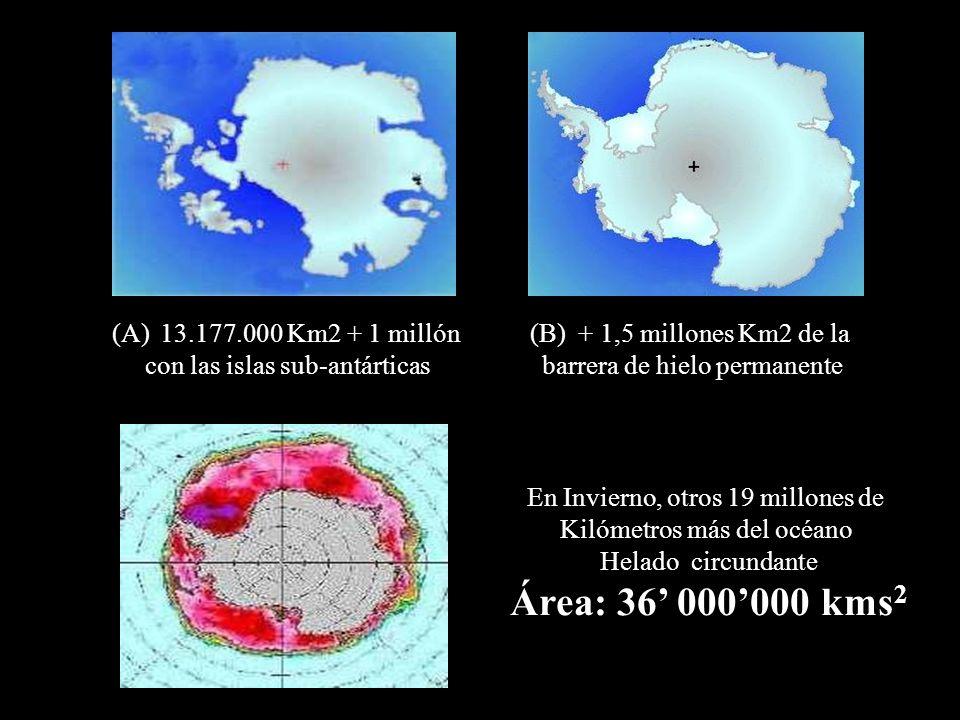 13.177.000 Km2 + 1 millón con las islas sub-antárticas. + 1,5 millones Km2 de la. barrera de hielo permanente.