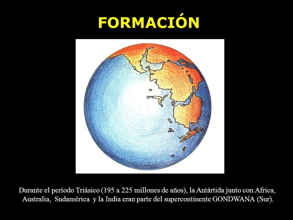 FORMACIÓN Durante el período Triásico (195 a 225 millones de años), la Antártida junto con Africa,