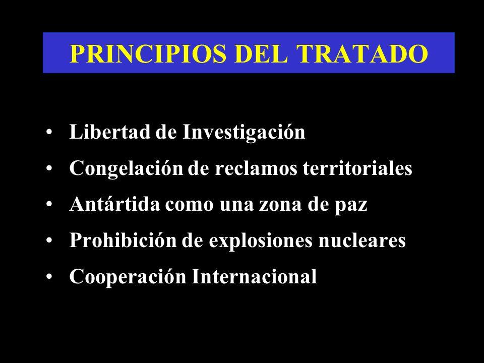 PRINCIPIOS DEL TRATADO