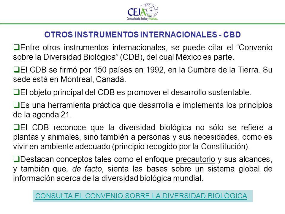 OTROS INSTRUMENTOS INTERNACIONALES - CBD