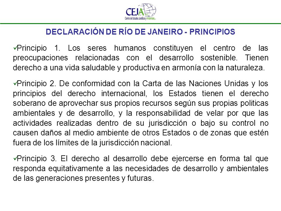 DECLARACIÓN DE RÍO DE JANEIRO - PRINCIPIOS