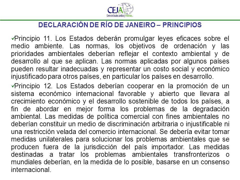 DECLARACIÓN DE RÍO DE JANEIRO – PRINCIPIOS