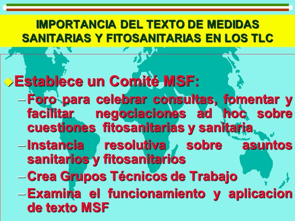 Establece un Comité MSF: