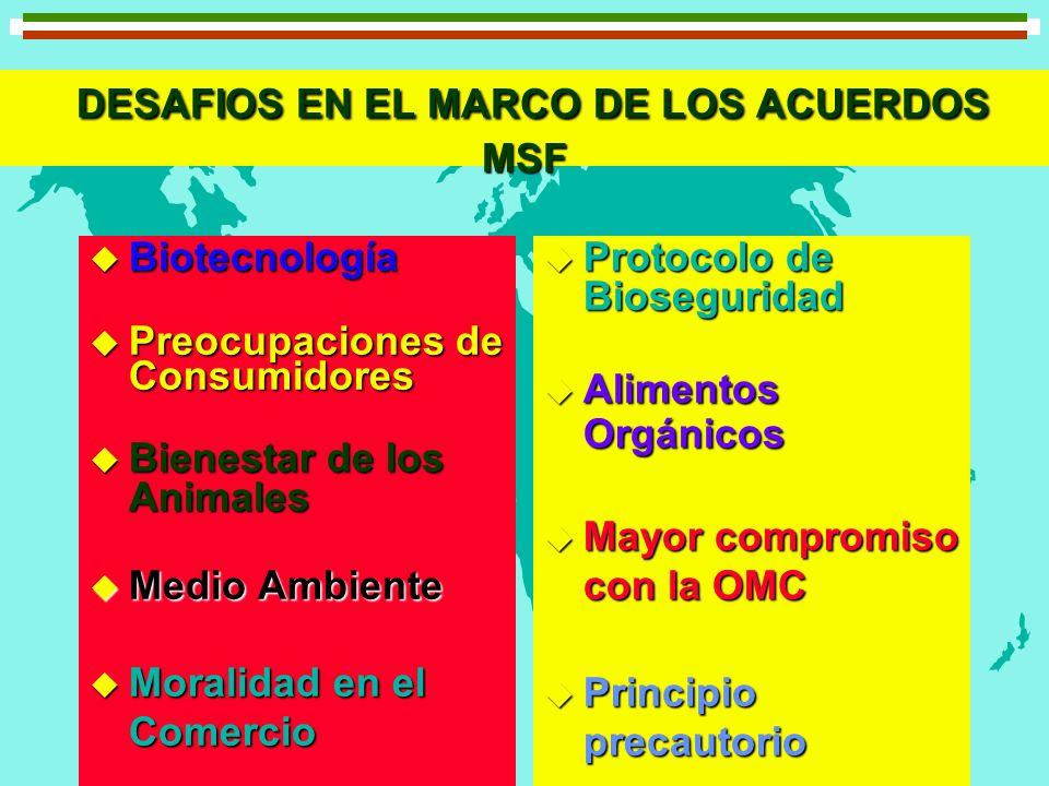 DESAFIOS EN EL MARCO DE LOS ACUERDOS MSF
