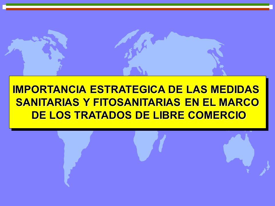 IMPORTANCIA ESTRATEGICA DE LAS MEDIDAS