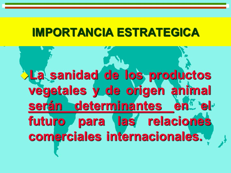 IMPORTANCIA ESTRATEGICA