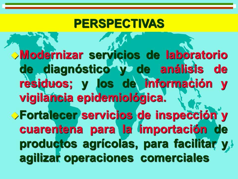 PERSPECTIVAS Modernizar servicios de laboratorio de diagnóstico y de análisis de residuos; y los de información y vigilancia epidemiológica.