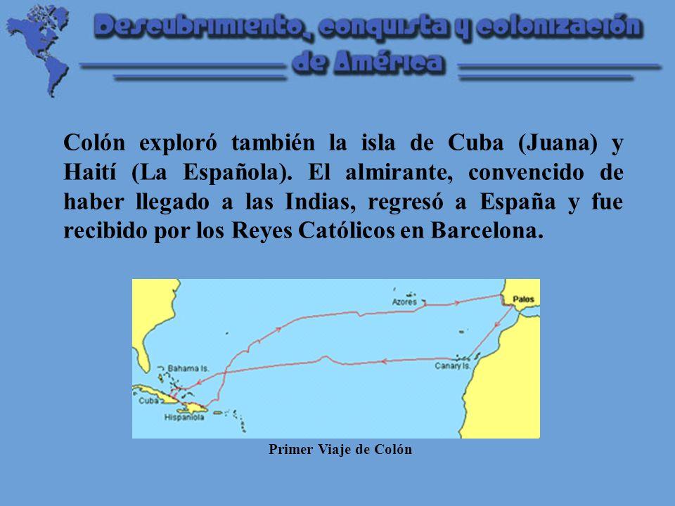 Colón exploró también la isla de Cuba (Juana) y Haití (La Española)
