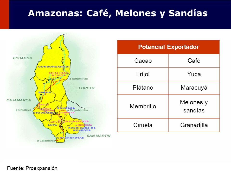 Amazonas: Café, Melones y Sandías