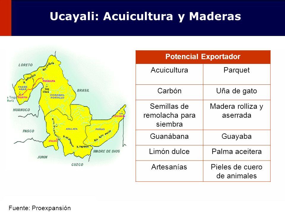 Ucayali: Acuicultura y Maderas