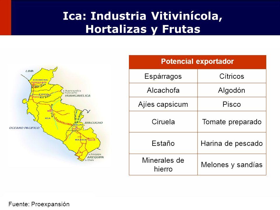 Ica: Industria Vitivinícola, Hortalizas y Frutas