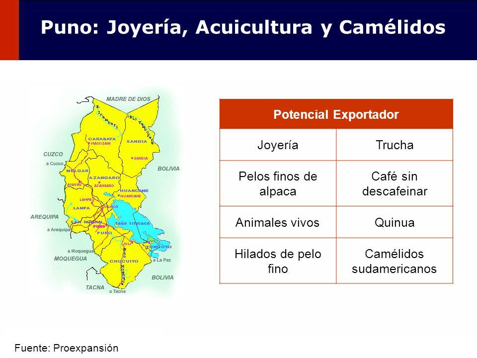 Puno: Joyería, Acuicultura y Camélidos