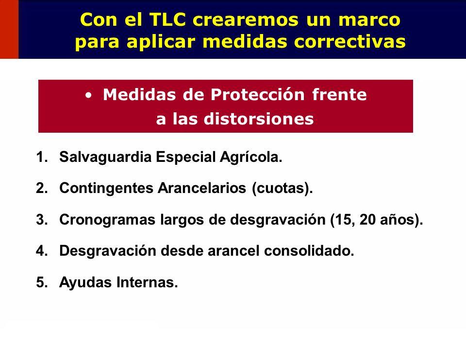 Con el TLC crearemos un marco para aplicar medidas correctivas