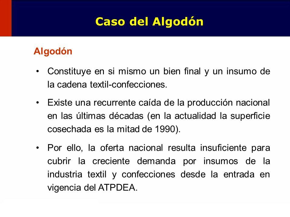 Caso del Algodón Algodón