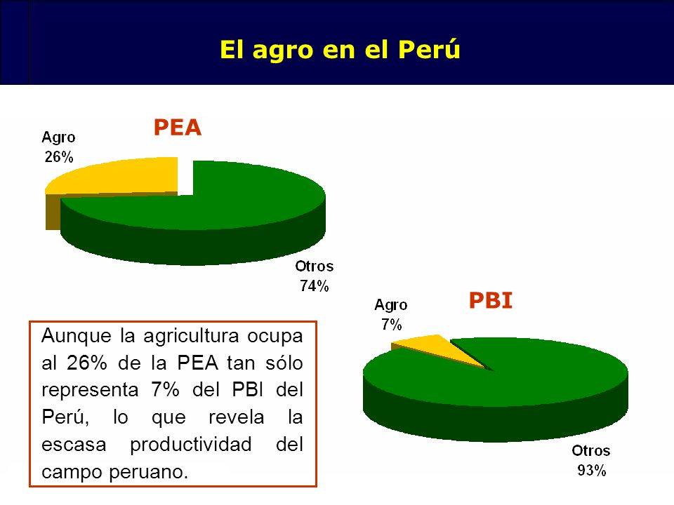 El agro en el Perú PEA PBI
