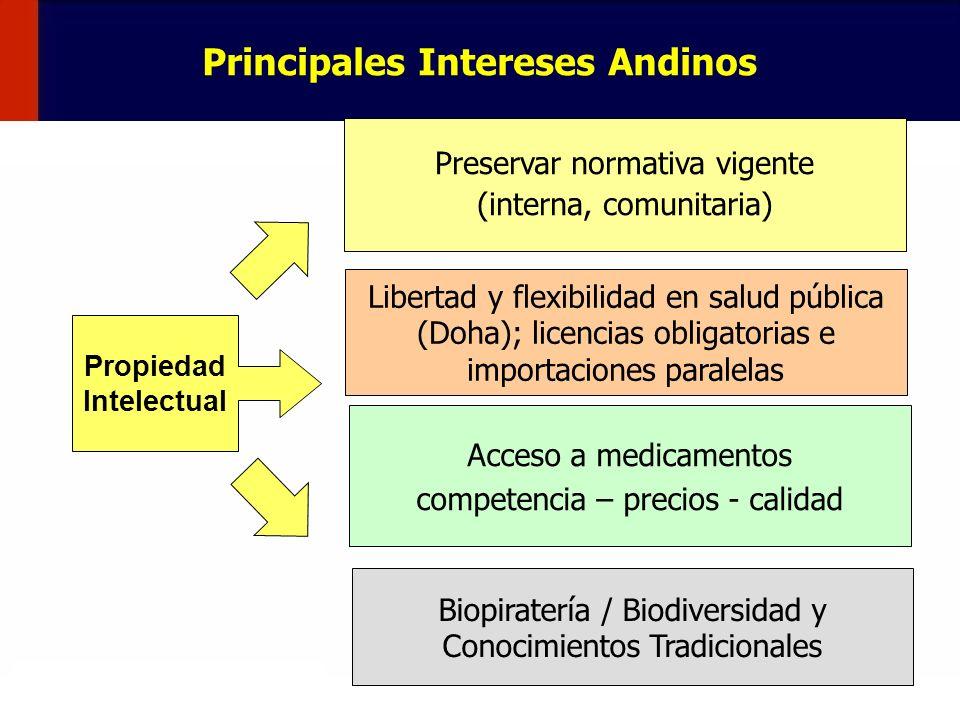 Principales Intereses Andinos Propiedad Intelectual