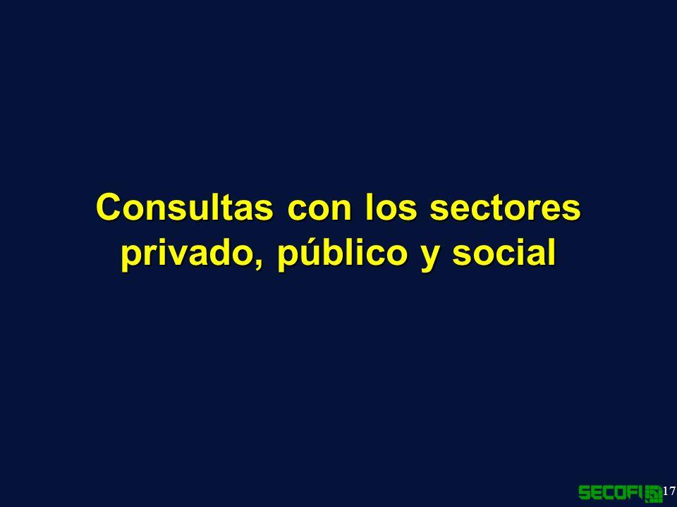 Consultas con los sectores privado, público y social
