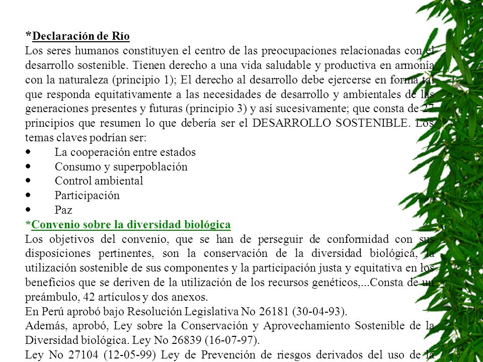 *Declaración de Río