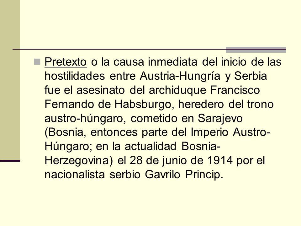 Pretexto o la causa inmediata del inicio de las hostilidades entre Austria-Hungría y Serbia fue el asesinato del archiduque Francisco Fernando de Habsburgo, heredero del trono austro-húngaro, cometido en Sarajevo (Bosnia, entonces parte del Imperio Austro-Húngaro; en la actualidad Bosnia-Herzegovina) el 28 de junio de 1914 por el nacionalista serbio Gavrilo Princip.