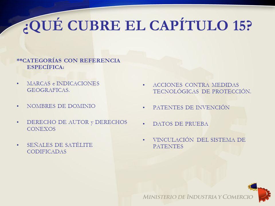 ¿QUÉ CUBRE EL CAPÍTULO 15 **CATEGORÍAS CON REFERENCIA ESPECÍFICA: