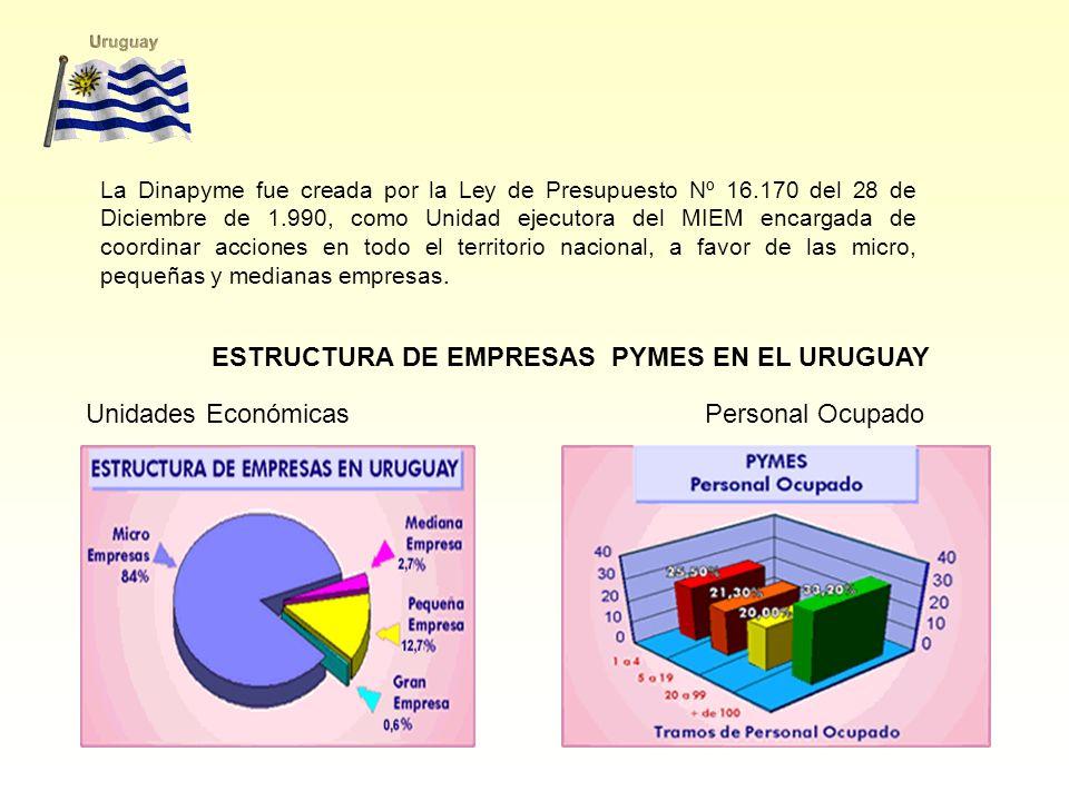 ESTRUCTURA DE EMPRESAS PYMES EN EL URUGUAY