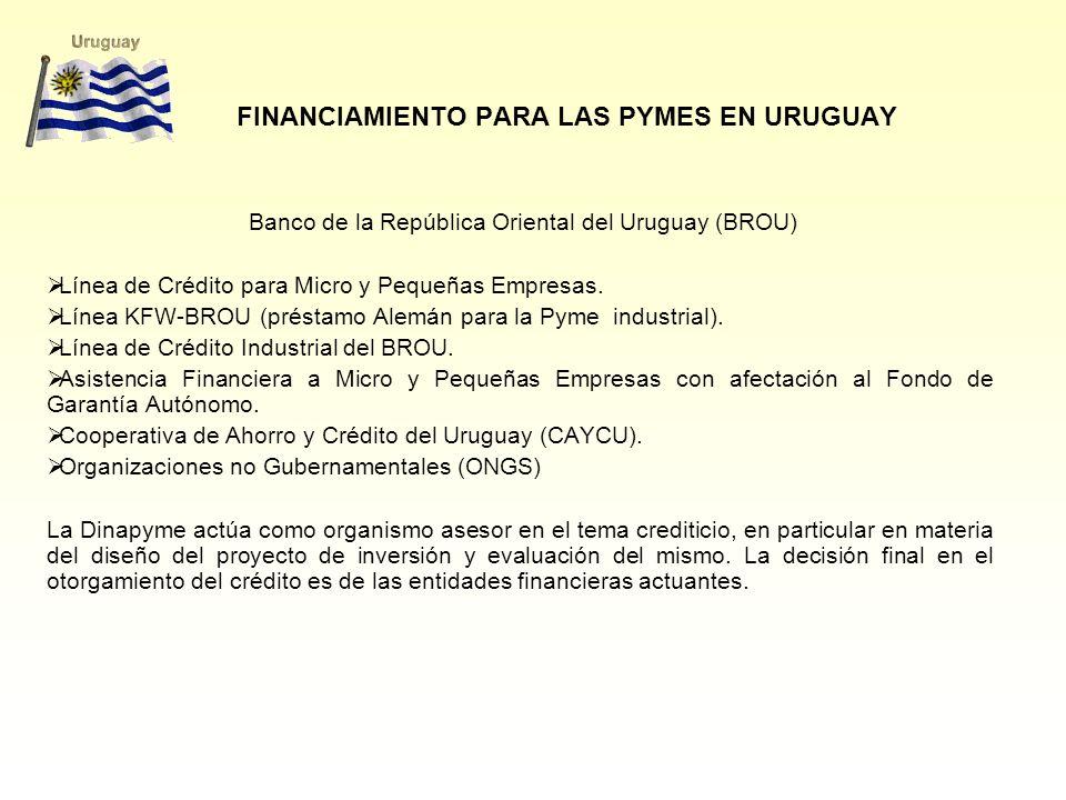 FINANCIAMIENTO PARA LAS PYMES EN URUGUAY