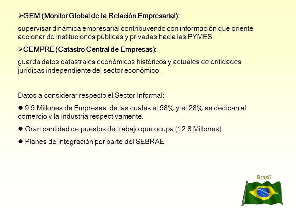 GEM (Monitor Global de la Relación Empresarial):