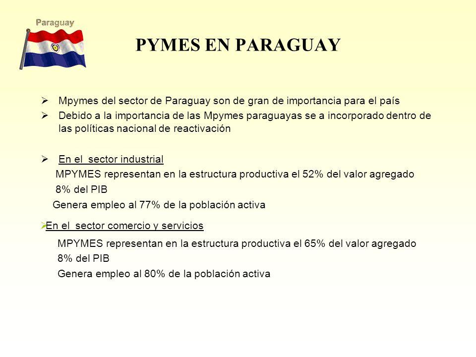 PYMES EN PARAGUAY Mpymes del sector de Paraguay son de gran de importancia para el país.