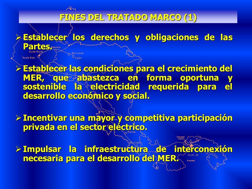 FINES DEL TRATADO MARCO (1)