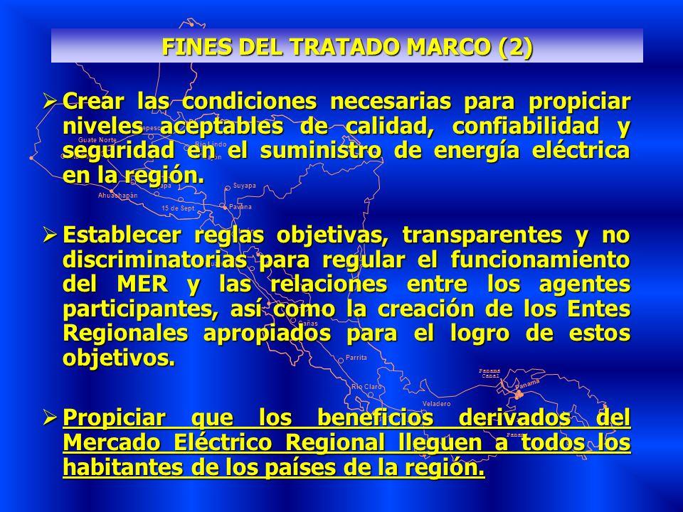 FINES DEL TRATADO MARCO (2)