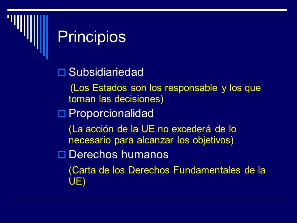 Principios Subsidiariedad