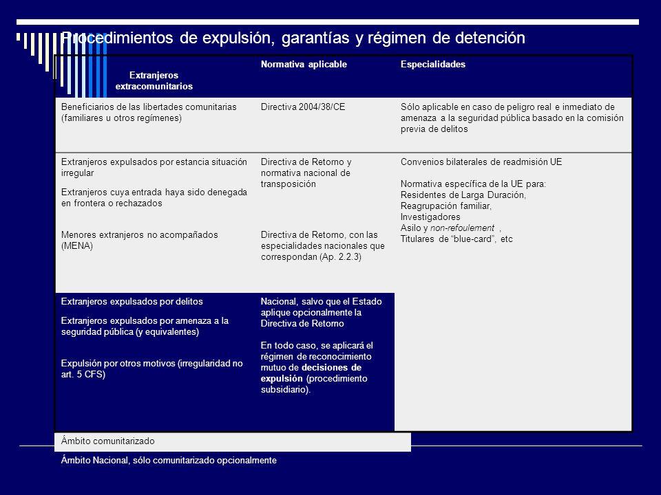 Procedimientos de expulsión, garantías y régimen de detención