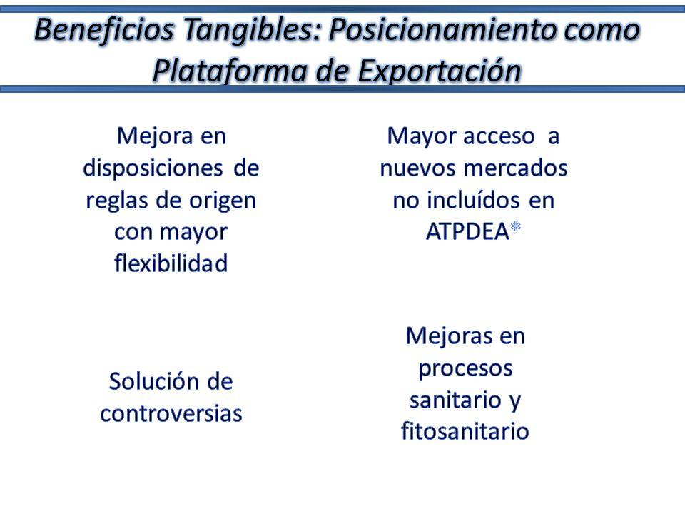 Beneficios Tangibles: Posicionamiento como Plataforma de Exportación