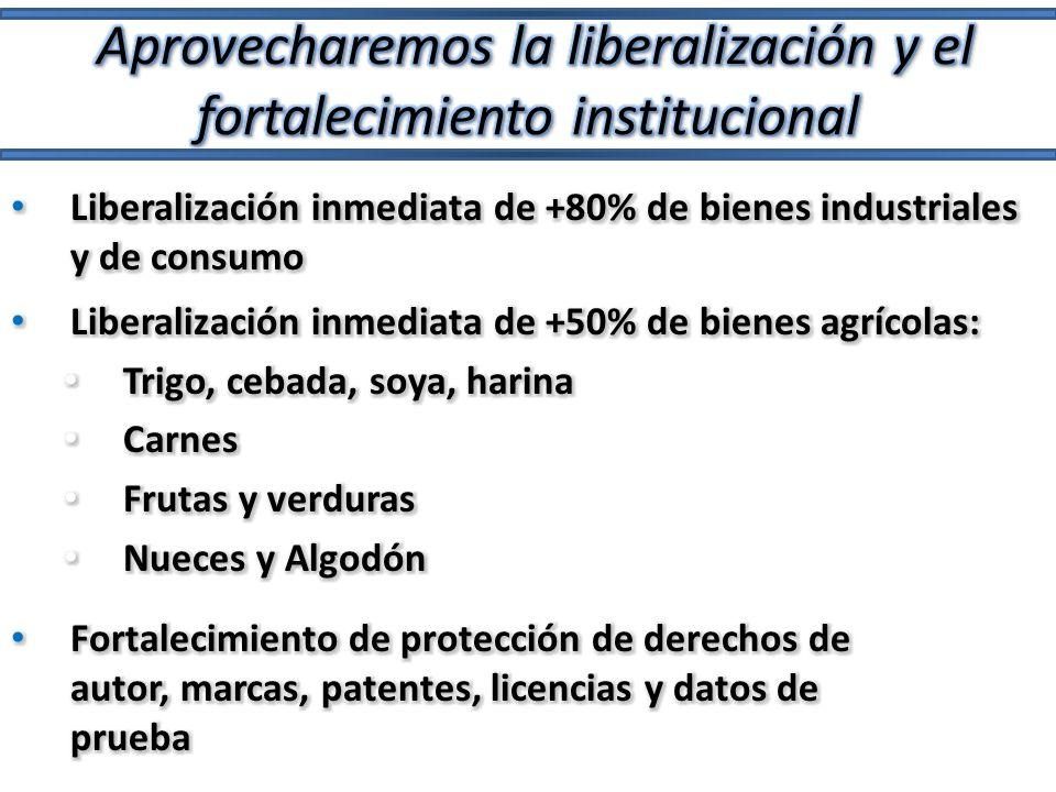 Aprovecharemos la liberalización y el fortalecimiento institucional