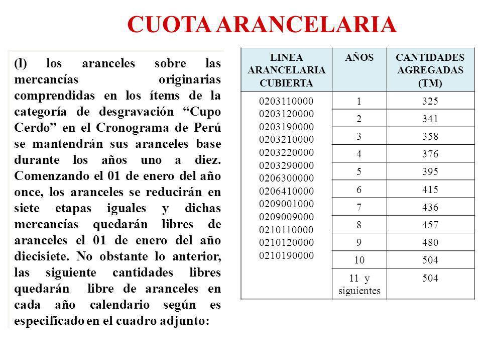 LINEA ARANCELARIA CUBIERTA CANTIDADES AGREGADAS (TM)